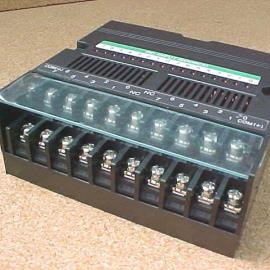 Input Module (16 In Source)